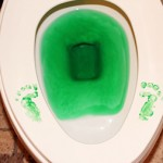 leprechaun-potty-trick