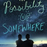 Possibility of Somewhere by Julia Day